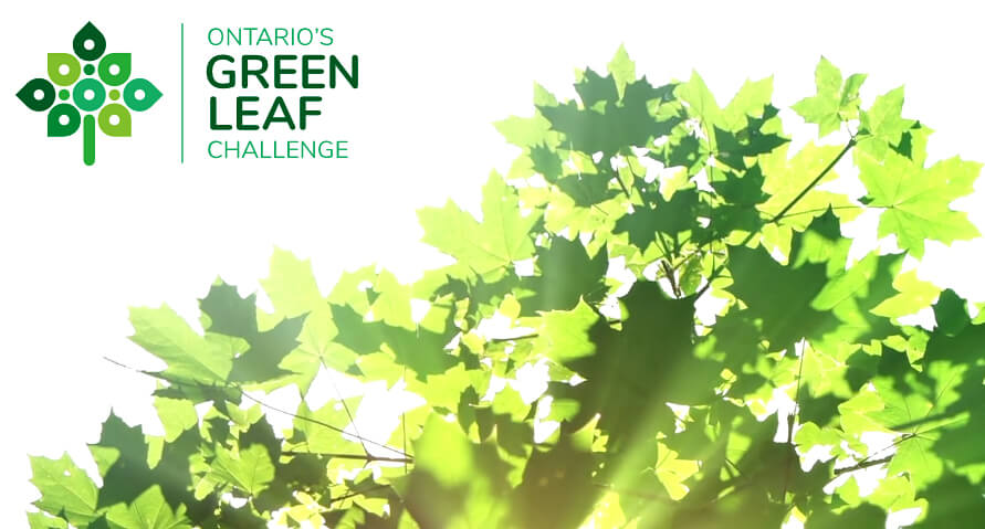 Ontario's Green Leaf Challenge