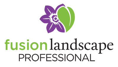 Fusion Landsape Professional Program
