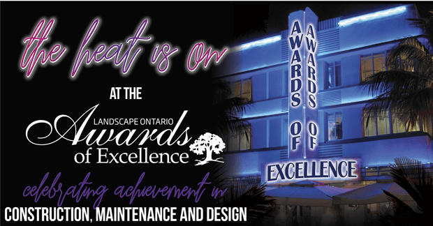 Awards of Excellence - The heat is on!
