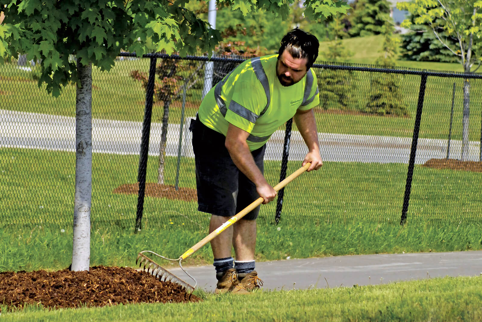 grounds maintenance worker raking mulch under a tree