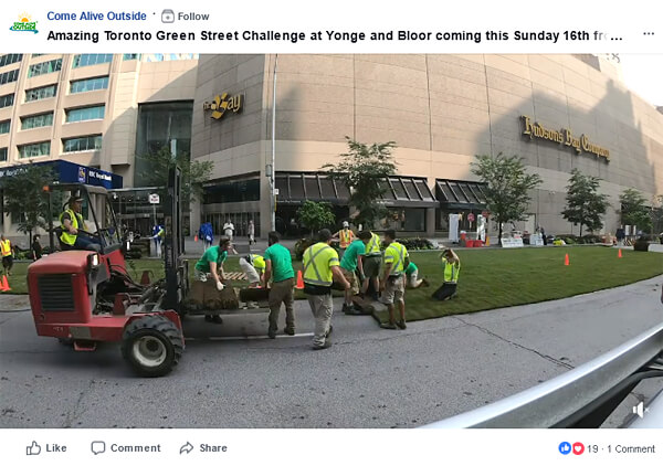 video of sod being laid down on a downtown street