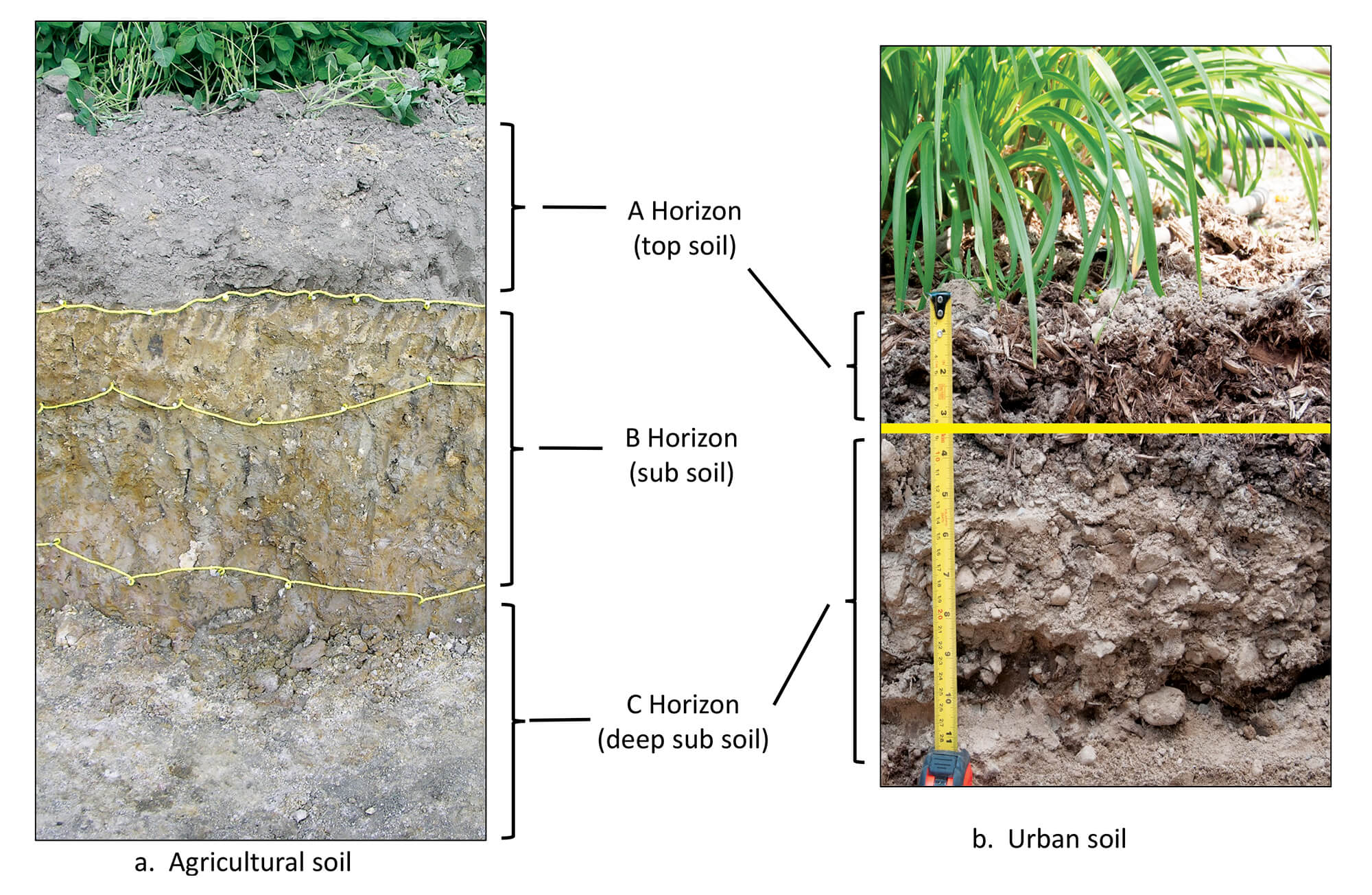 chart showing various subsoils