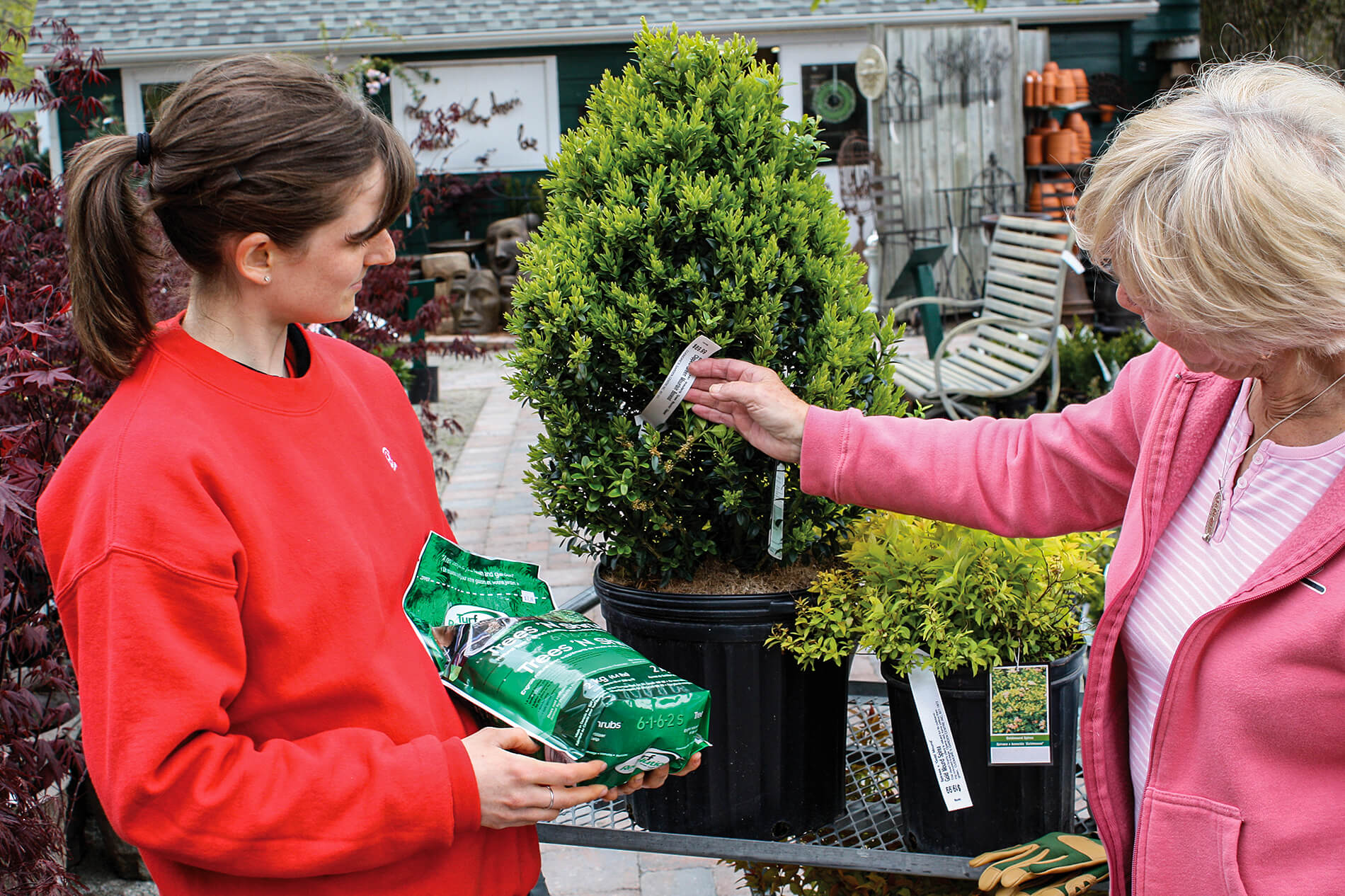 employee helping a woman buy a shrub
